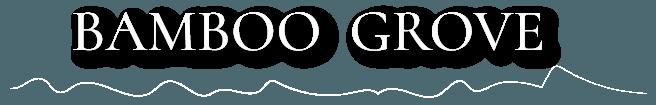 logo_sdw